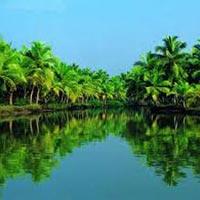 Kerala Honeymoon 8 DAYS Tour