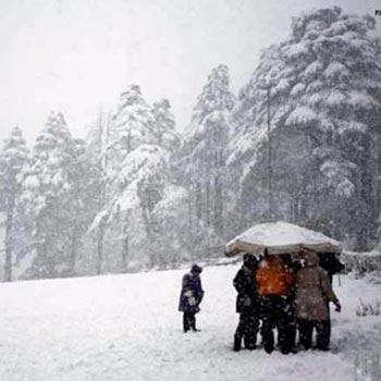 Shimla Manali Chd Family Tour