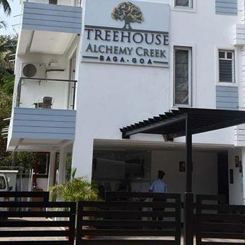 Treehouse Alchemy Creek, Baga, Goa Tour