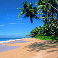Honeymoon in Goa Package