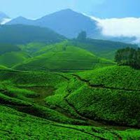 Hills of Kerala Tour