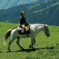 Great National Himalaya Park Sairopa to Sairopa Trek Tour