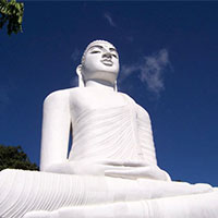 Best of Sri Lanka Tour