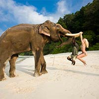 The Andaman Islands Tour