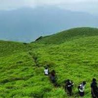 Bangalore, Coorg, Ooty, Wayanad Tour