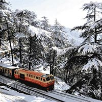 Shimla Short Escape Package