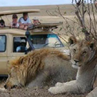 Tanzania Delight Tour Package