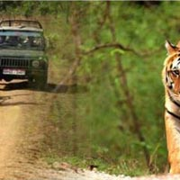 Madhya Pradesh 13 Nights / 14 Days Tour