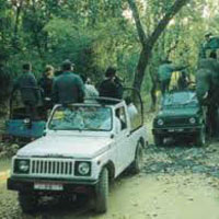 Dandeli Jungle Safari