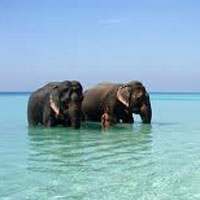 Adventure Holiday in Islands Tour