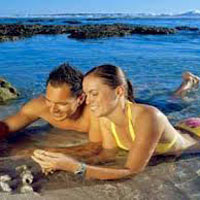 Thrilling North Goa With Casino Carnival Tour
