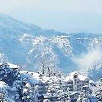 Shimla Discovery Tour