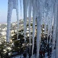 Exciting Tour Of Shimla 2*