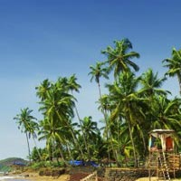 3N/4D Goa Package 5