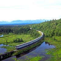 8 Days Alaska (June, July, August, September Only) Tour