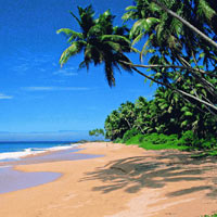 Kerala Holiday Package - 7 Nights / 8 Days