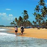 Goa's Great Beach Tour