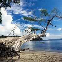 Andaman Normal Package Tour