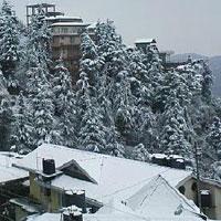 Natural Beauty of Himachal Pradesh Tour