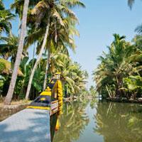 Exotic Kerala (Standard Package)