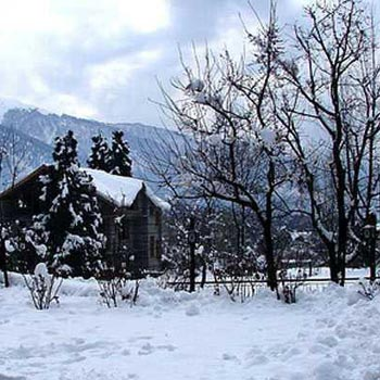 Shimla 2N/3D Package