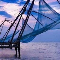 Cochin- Munnar