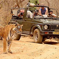 Delhi - Agra - Ranthambore - Jaipur Tour Package