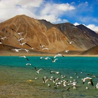 Fly Ladakh Every Day Tour