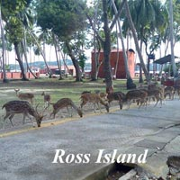 Port Blair Travel Package Tour