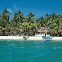 Green View of Andaman Islands Tour