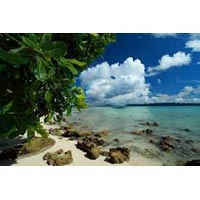 Travel in Andaman Island Paradise Package