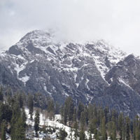 Himachal Package - 7 Nights / 8 Days