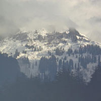 Shimla - Manali Honeymoon Package