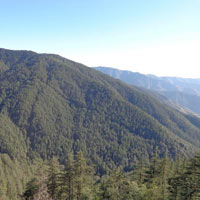 Shimla - Manali - Chandigarh Honeymoon Package