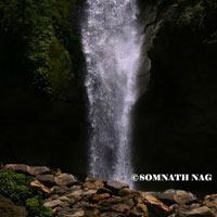 Gangtok - Lachung - Pelling - Darjeeling Tour Package (8 D & 7 N)