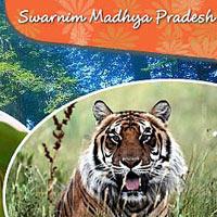Swarnim Madhya Pradesh Tour - Pachmarhi - Jabalpur - Kanha - Bhandavgarh