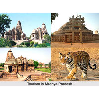 Heart of India - Madhya Pradesh Tour (Jabalpur - Kanha - Pachmarhi) - 5 Nights & 6 Days