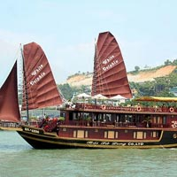 Halong (Vietnum) Dolphin Cruise Tour 2 days 1 night