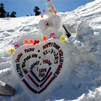 Manali & Shimla  Honeymoon Package 6  Nights And 7 Days