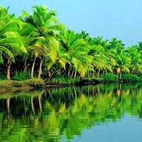 Unique Kerala Tour