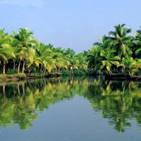 Southern Paradise (Cochin-Munnar-Thekkady -Alleppy-Kovalam-Trivandrum)07 Nights & 08 Days