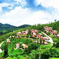 Mysore & Ooty - 04 Nts/05 Days Tour