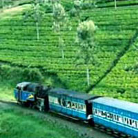 Bangalore - Mysore - Coorg Days Tour