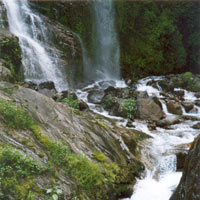 Himachal - Shimla - Manali Honeymoon Tour