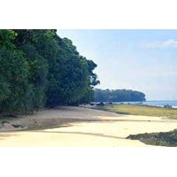 Havelock Beach Tour