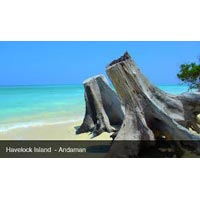 Holiday Package in Havelock Island