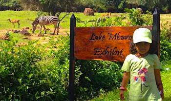 Entebbe Zoo !