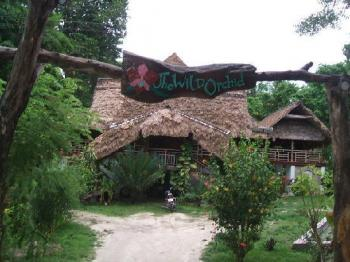 The Wild Orchid Resort