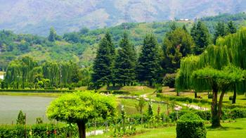Botanical Garden Kashmir