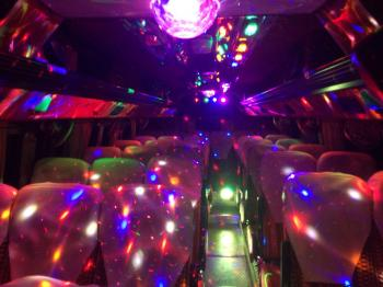 Miny bus